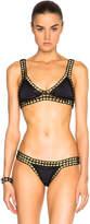 Kiini Chacha Bikini Top