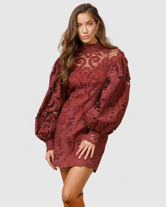 Ministry Of Style Boudoir Lace Mini Dress