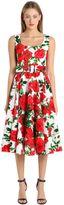 Samantha Sung Floral Print Stretch Cotton Dress