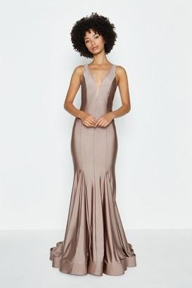 Coast Deep Plunge V-Neck Maxi Dress