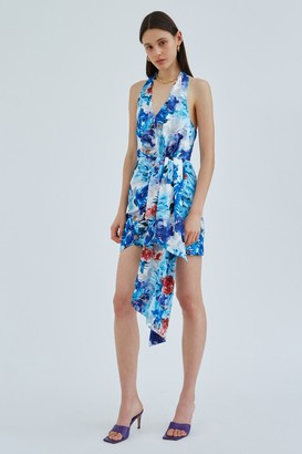 C/Meo ORBITAL DRESS Blue Painted Floral