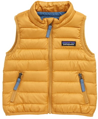Patagonia Windproof & Water Resistant Down Sweater Vest