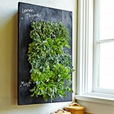 Williams-Sonoma Williams Sonoma Chalkboard Wall Planter