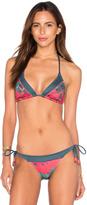 Salinas Triangle Bikini Top