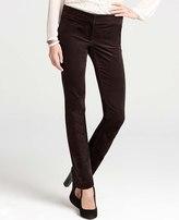 Ann Taylor Tall Velvet Slim Leg Pants
