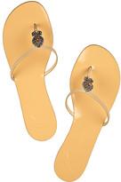 Giuseppe Zanotti Embellished leather flat sandals