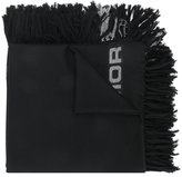 Christian Dior Hardior scarf