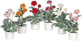 Asstd National Brand Nearly Natural Ranunculus With White Vase Set Of 6