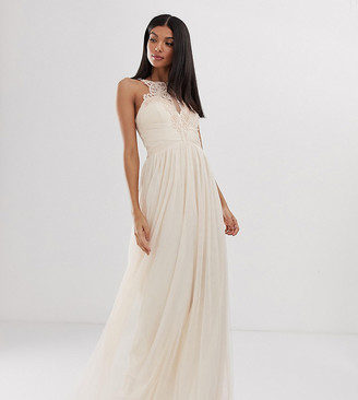 Little Mistress Tall tulle maxi dress with lace detail-Pink
