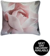 Ted Baker Porcelain Rose 45x45cm Feather Filled Cushion