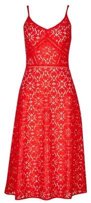 Dorothy Perkins Womens **Luxe Red Camisole Lace Dress, Red