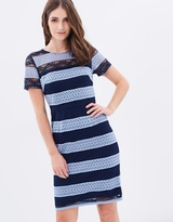 Dorothy Perkins Stripe Lace Pencil Dress