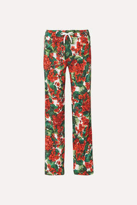Dolce & Gabbana Intarsia-trimmed Floral-print Cady Track Pants - Red