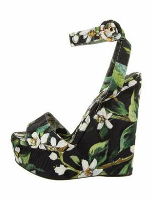 Dolce & Gabbana Floral Print Sandals Black