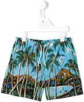 Dolce & Gabbana palm tree print swim shorts