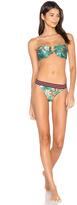 Zimmermann Tropicale Balconette Bikini Set