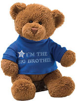 Gund Im The Big Brother Bear Plush