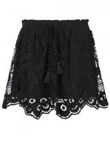 Chloé embroidered skirt