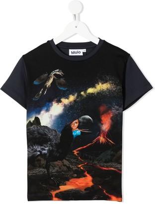 Molo dinosaur organic cotton T-shirt