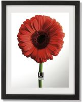 Umbra 13'' x 16'' Floating Document Frame