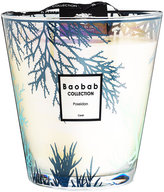Baobab Collection Coral Scented Candle - Poseidon - 16cm