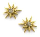 Elizabeth Cole Satine Earrings 7758271888