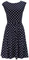 Wallis Petite Navy Polka Dot Fit And Flare Dress