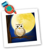 3dRose LLC qs_165568_10 Houk Digital Design - Wise Owl - Night Wise Owl with big moon - Quilt Squares