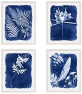 Pottery Barn Cyanotype Framed Prints