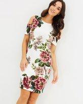 Oasis Mollie Placement Scuba Dress