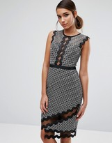 Three floor Midi Pencil Dress In Contrast Lace With Piping