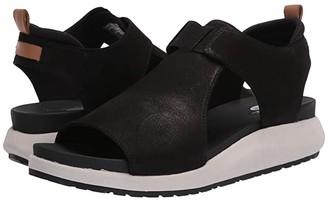 Dr. Scholl's Rocco (Black) Women's Shoes