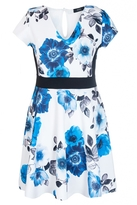 Quiz Curve Cream And Blue Flower Print Panelled Skater Dress