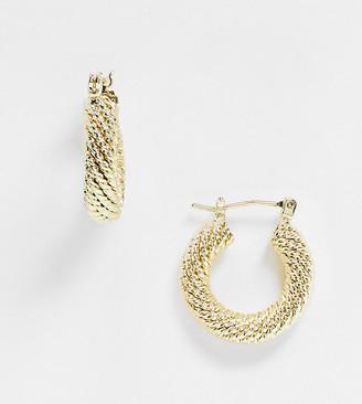 Shashi Shantal twisted chunky hoop earrings in gold plate