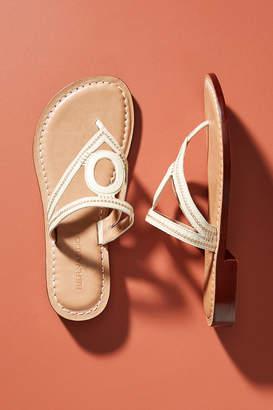 Bernardo Tania Slide Sandals
