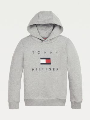 Tommy Hilfiger Chest Logo Pure Organic Cotton Hoody