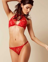 Agent Provocateur Kendall Brief Red