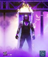 WWE Undertaker 8x10 Glossy Photo (flaming casket)