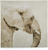 Graham & Brown Canvas Wild Thing Trunk Wall Art