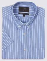 Marks and Spencer Pure Cotton Easy to Iron Regular Fit Shirt