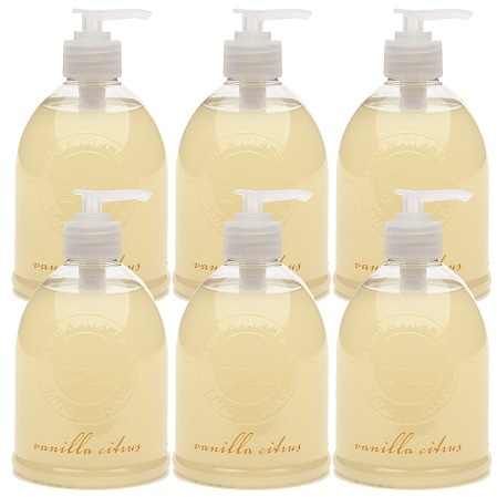 De-Luxe BAIN Liquid Soap, Full Case Vanilla Citrus