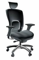 Ergonomic Genuine Leather Task Chair Symple Stuff