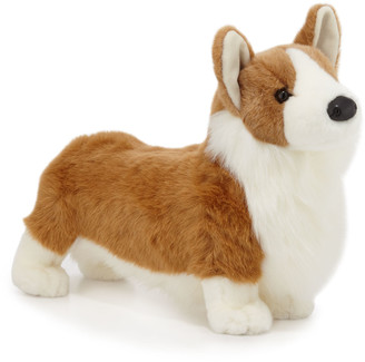 Douglas Chadwick the Corgi Stuffed Animal