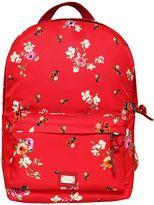 Dolce & Gabbana Floral Printed Nylon Backpack