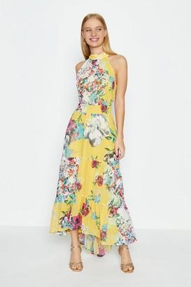 Coast Halterneck Printed Midi Dress