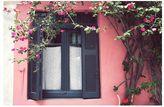 Pottery Barn Black on Pink Framed Print by Lupen Grainne