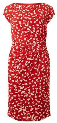 Dorothy Perkins Womens **Lily & Franc Coral Daisy Print Dress, Coral