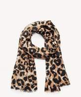 Sole Society Cheetah Print Oversize Scarf