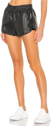 Koral Prep Zephyr Shorts