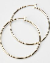 Shiny Gold Hoop